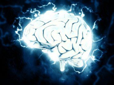 the best diet for brain