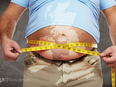 Persistent Obesity and the Health Consequences